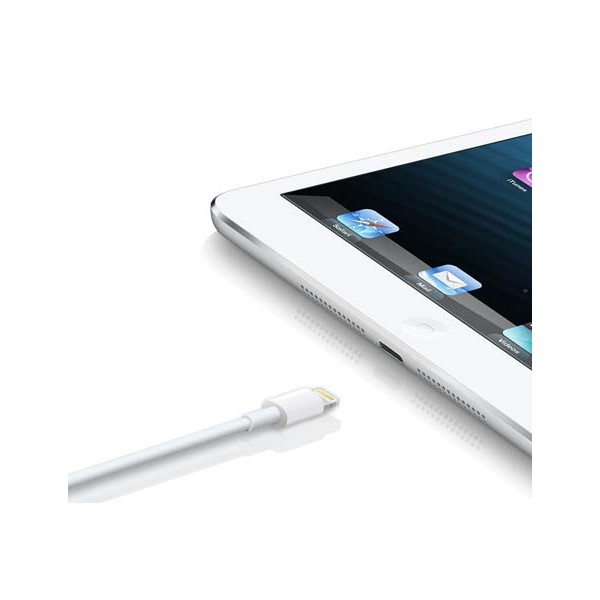 Genuine iPad Air 4 & iPad Mini Data  & Charging Cable